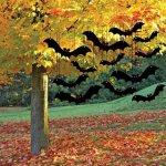 halloweenhus-2